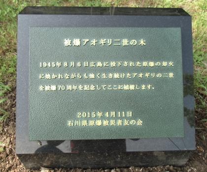 2015.6.17 被爆アオギリの碑文